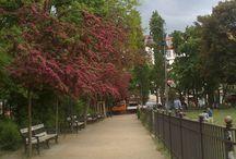 Boxhagener Platz / Hans' Heimat ist Berlin. Ganz in der Nähe vom Boxhagener Platz in Berlin-Friedrichshain wurde er geboren. Und nirgendwann ist der Boxi schöner, als im Frühling...
