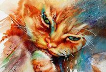 Gatti e animali
