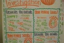 Pumpkin unit / by Edith Loya