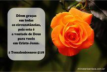 Versículos / versículos ilustrados