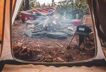 Kamp:(