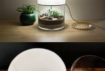 Creative Ideas - Plants