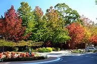 """STIRLING AU / The beautiful place named """"Stirling"""" among the Adelaide Hills. For many, this unhurried village is acknowledged as the premier gateway to an incomparable lifestyle. Nestled in the city's clean and green hinterland it represents the essence of the Hills way of life."""