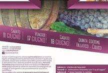 Colico in Cantina: 2 percorsi di degustazioni vini e assaggi 11-17-18 Giugno Colico (LC)