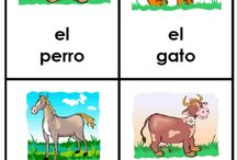 Los animales // Animals
