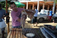 Fishmarket Las Terrenas/Samaná / Impressions of the fishmarket in LAs Terrenas/Samaná