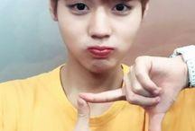 Jihoon/wanna one