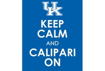 Love my CATS!!!!!! / All things UK Wildcats!! :) / by Brittany Carter