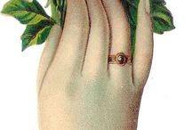 Ladies hand with flowers