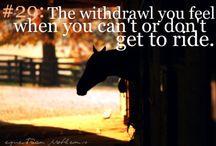 Equestrian problems.