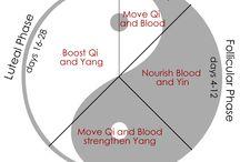 Chinese medicine menstruation