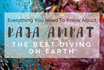 Best Diving Destination / Ideas about where to go for best diving all around the world. From Maldives, Red Sea, Great Barrier Reef, including a bit of diving tips