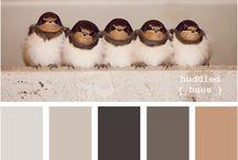 | color pallate |
