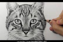 katten tekeningen maken