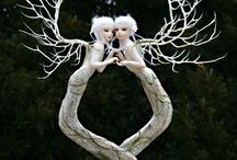 Fairy tale art 3 D / by Daphne Krook