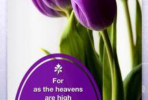 HIS MERCY.....