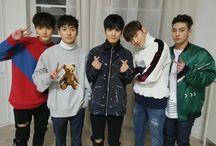 NU'EST (뉴스트) / Bias : Ren Bias Wreckers : JR & Minhyun Members : Ren, Minhyun, JR (Junior Royal), Dongho, Aron Fandom Name : L.O.ㅅ.E / ㄴ.ㅇ.ㅅ.ㅌ