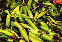 Farm Fresh / Fresh Picked Favorites