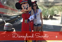 Disneyland Tips and Tricks / by Lindie Huffman