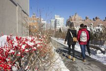 Winter Fun on the High Line / Slip on a warm coat and enjoy the stark beauty of the High Line in winter.
