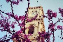 Beloved Crete