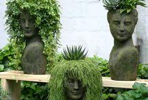 Utendørs planter