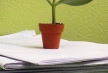 verde in ufficio