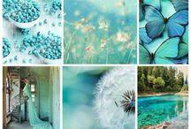 Pallette of colors