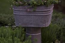 Outdoor/garden / by Cheryl Deere