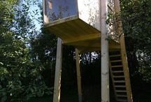 ARQ/tree House