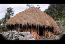 asmat / hanai houses Papua