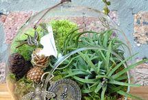 zahrada všude / jak využít co nejlíp a nejkreativněji každý volný prostor