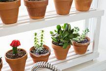 záhradkárke nápady