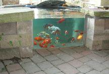 Koi Ponds / Great koi pond ideas