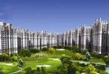 Amrapali Golf Homes / Amrapali group is one of the most successful developers of Delhi/NCR, who is performing excellently in all the aspects of the realty sector.