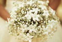 Ashley's Wedding / by Jinni Zieleniewski
