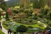 jardines de ensueños.