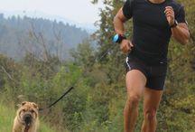 SMART LEASH | HANDS FREE / LISHINU| hands free smart retractable Dog LEASH.  Lishinuportugal@gmail.com