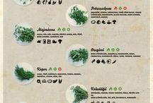 food'n garden / by Dóra Péterfi