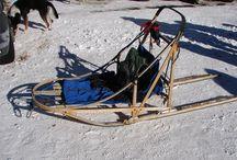 dog/sled