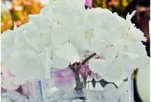 Flowers ideas & decoration