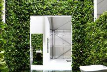 Foliage / Green walls & interiors