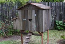 Chicken coops / by Paul