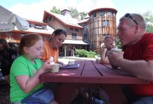 You Scream, We All Scream for Ice Cream that Supports Farm Education! / Ice Cream at Stonewall Farm