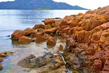 Planning: Tasmania Trip / by Rose MacAuslane