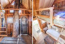 casa del árbol | tree house