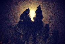 Moon, stars and skies