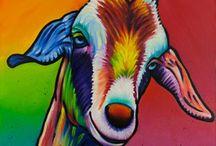 renk hayvan çizim
