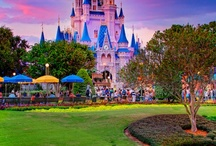 Walt Disney World / by Alyssa Mackin