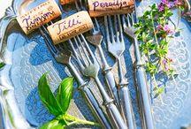 My Vegetable Garden / Ideas for verdant vegetable garden